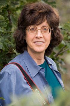 Wendy Shattil